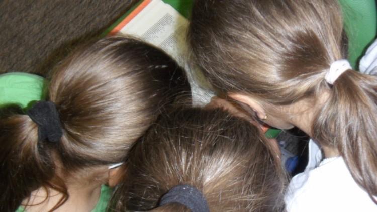 Lekcje biblioteczne dla klas III Szkoły podstawowej w MBP: katalogi, słowniki…