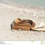 książka-na-plaży-26477059